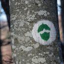 želod, oznaka krajše (male) gozdne pešpoti kozice