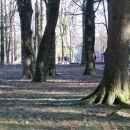 park v delnicah