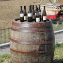 pred kmetijo v lenivcu, ukvarjajo se z vinom...