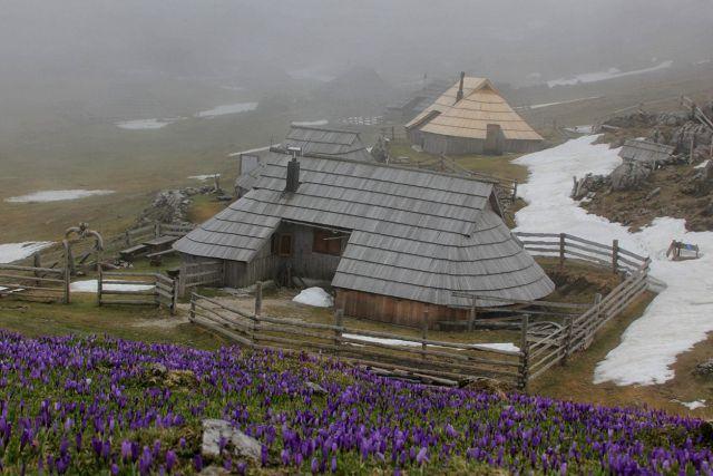 Velika planina – 10.4.2016 - foto