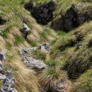 ostanki vojaških rovov na Slatniku