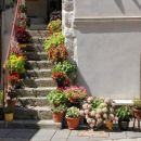 cvetoče stopnice v mestu Cres