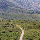 megalitski krog na levi strani kolovoza