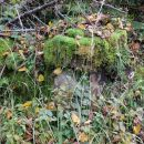 komaj vidni ostanki ruševin nekdanjih domačij