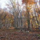 takole narava v brezpotju pokaže, kje je prava pot...