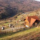 Drenje in Soteška gora z zidanicami in vinogradi