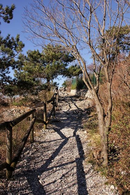 Rilkejeva pot po robu devinskih pečin