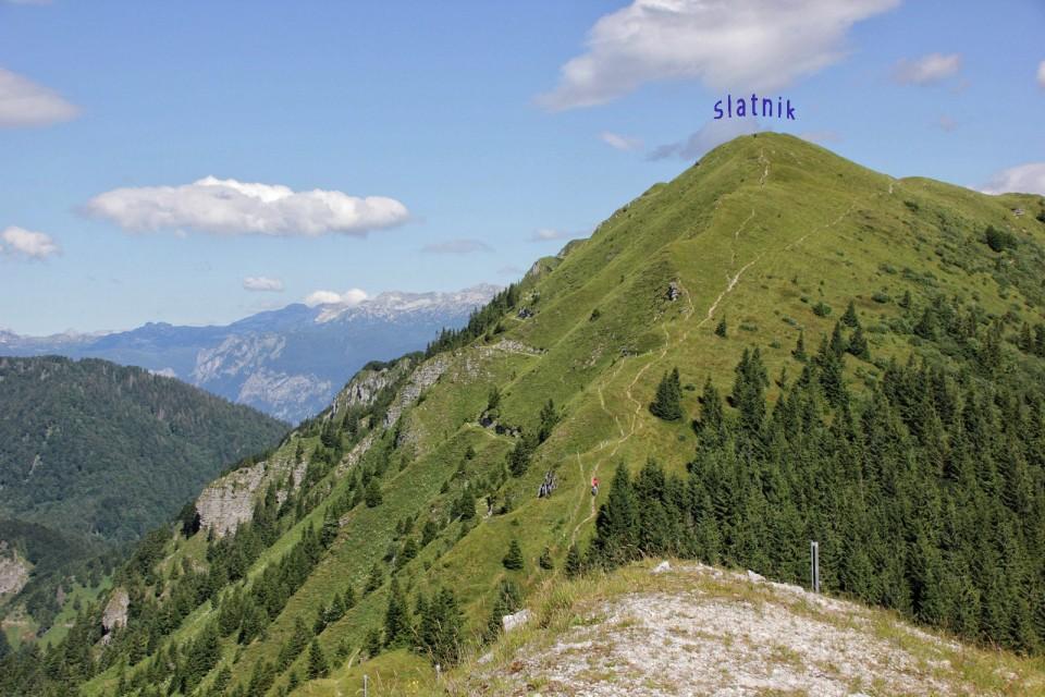Nad Soriško planino – 16.7.2017 - foto povečava