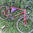Gorsko mladinsko kolo